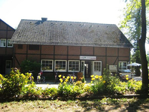 Waldcafe_Frontal_Tulpen